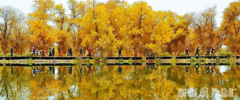 瑰丽多姿国家公园尽显自然神奇造化