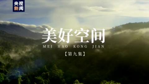 美好空间——跟着总书记一起建设美丽中国